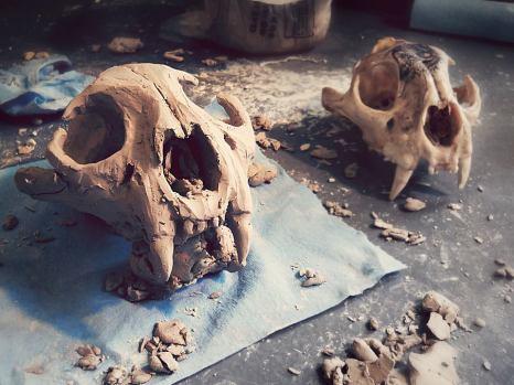 Mountain Lion Skull Cermanics
